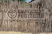 Cerca - Fence