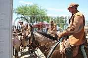 Vaqueiro - Cowboy