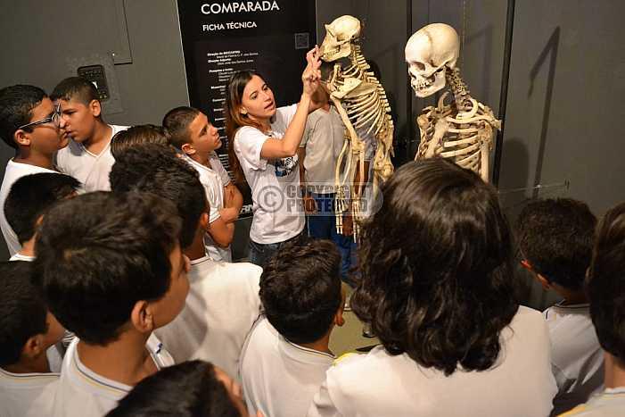Museu Camara Cascudo - Museum Camara Cascudo