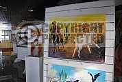 Galeria de arte - art gallery