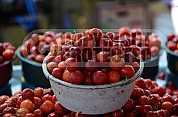 Acerola - Acerola fruit
