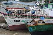 Barcos - Boats