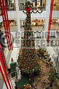 Arvore de natal - Christmas tree