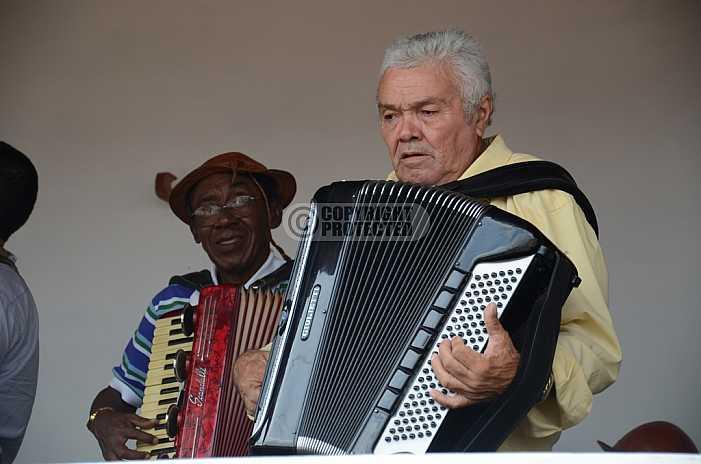 Sanfoneiro - Musician